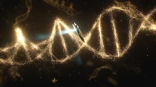 Episode 2 of Cosmos dealt with DNA and evolution