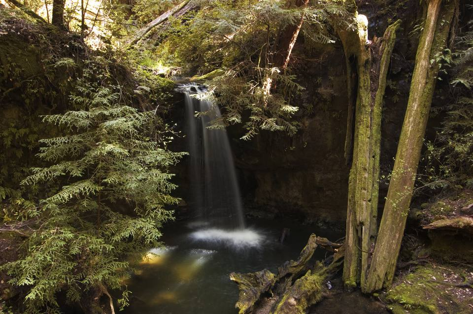 Where to See Waterfalls in Silicon Valley