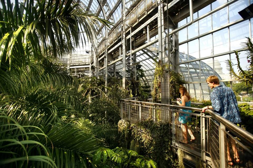 Tourists at the botanic gardens, Washington DC, United States, USA