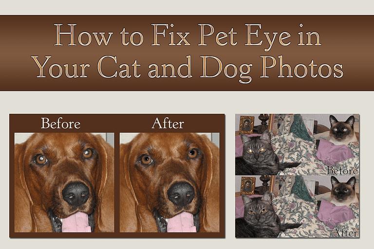 Fix Pete Eye