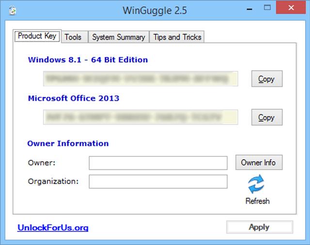 Screenshot of WinGuggle v2.5 in Windows 8