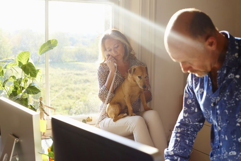 Couple with dog in sunny home office