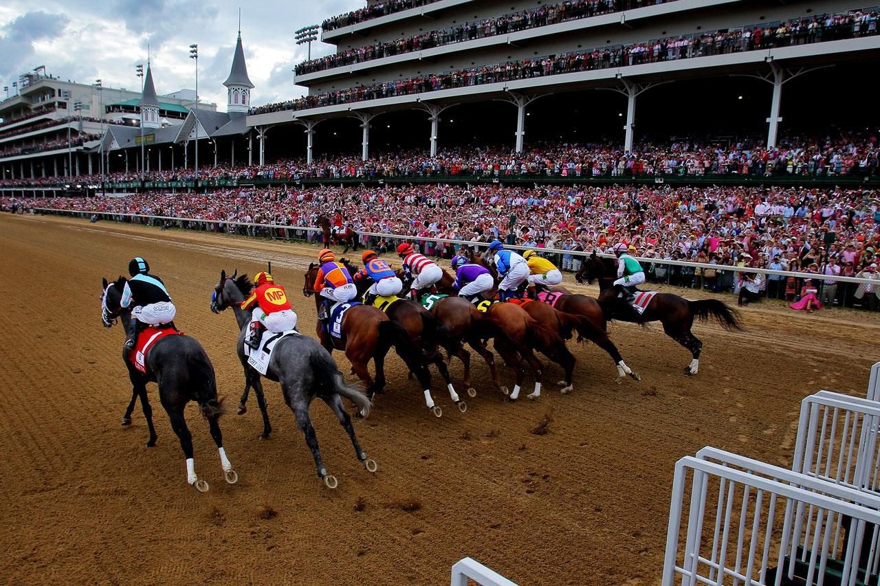 Thoroughbred horse racing entries and results falaconquin