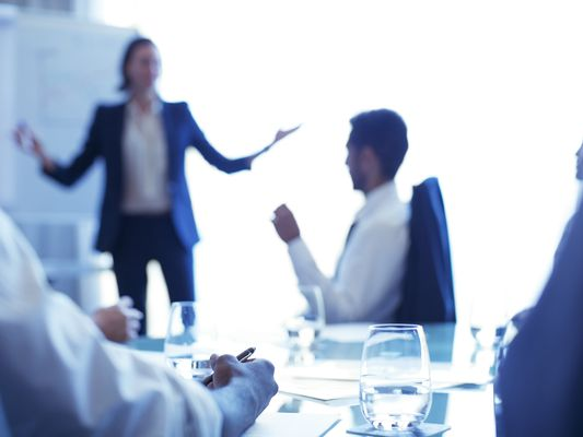 Young businesswoman standing in conference room giving presentation