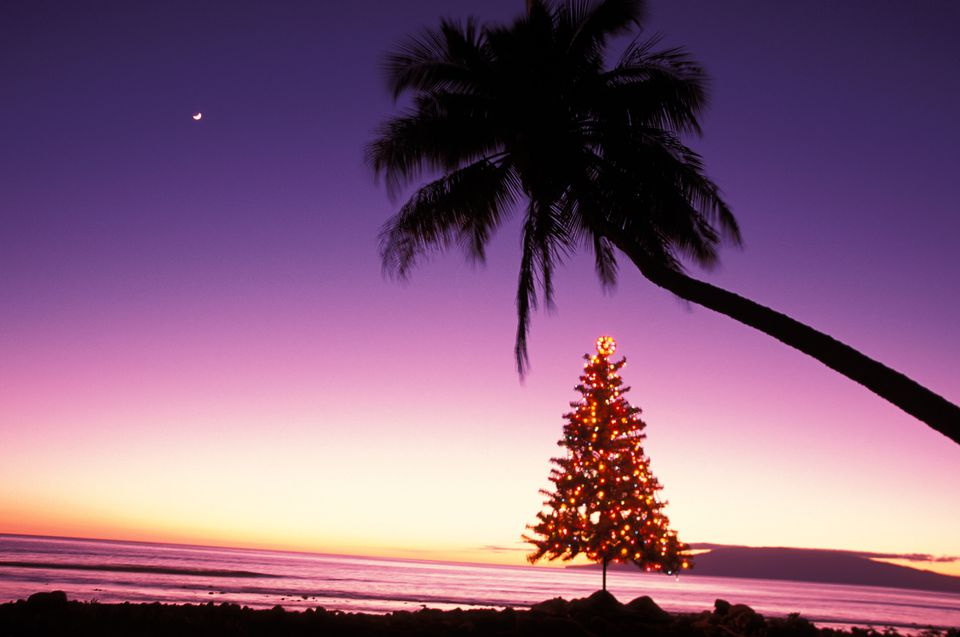 Hawaiian christmas and new years words and phrases m4hsunfo