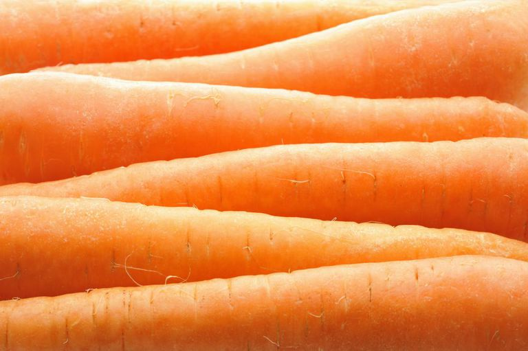 close up of carrots