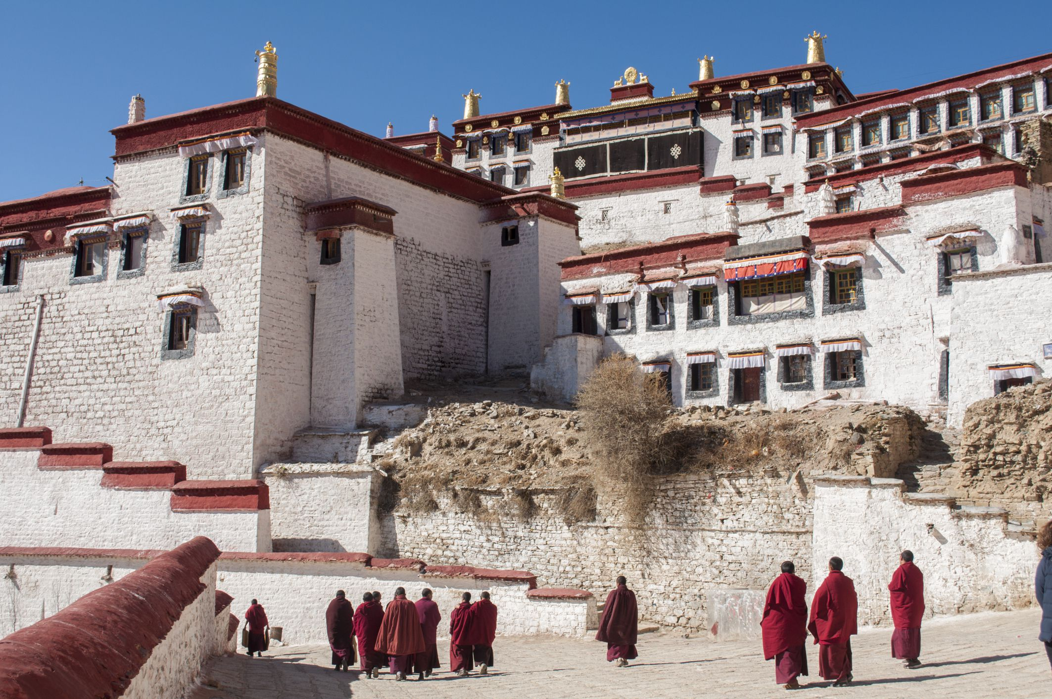 tibetans of china The monk doused his robes in kerosene then set himself alight, running with  flames blazing about 200 metres down the street outside the kirti.