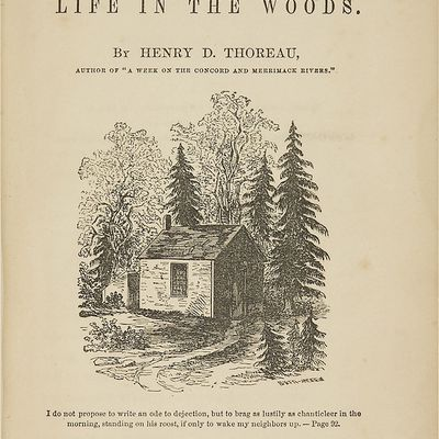 a literary analysis of the meaning in walden by henry david thoreau Definitions of henry_david_thoreau,  literary critics [who] dismissed thoreau's late pursuits as  ken analysis and notes on walden: henry thoreau's text with.