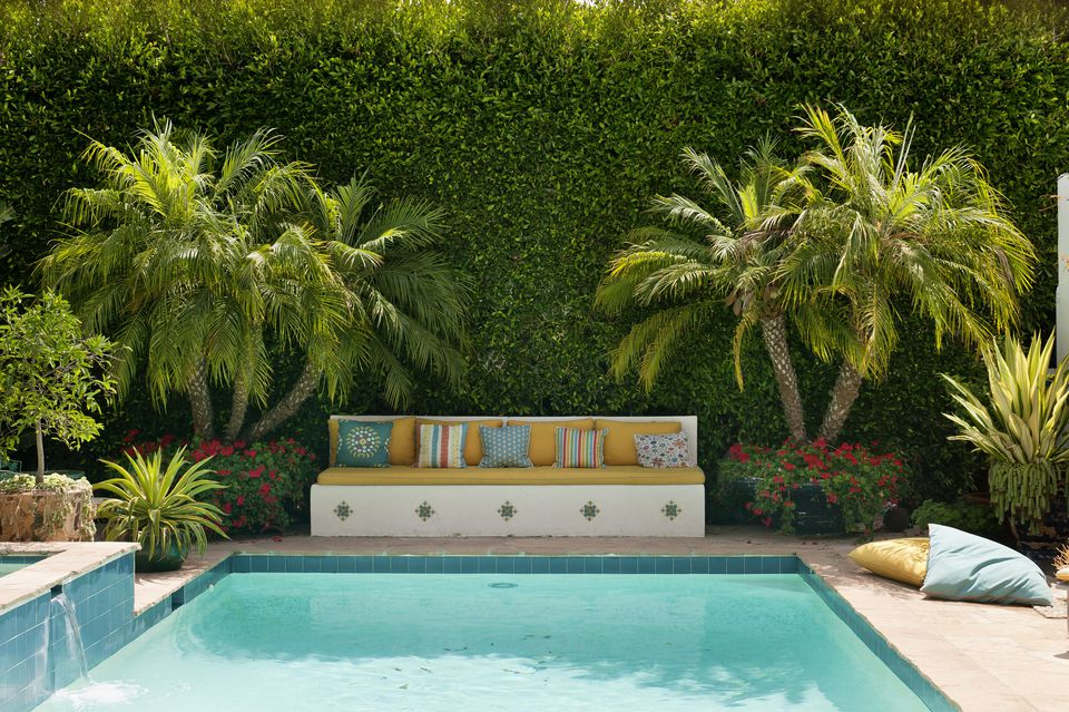the best plants for poolside landscaping - Garden Ideas Around Swimming Pools