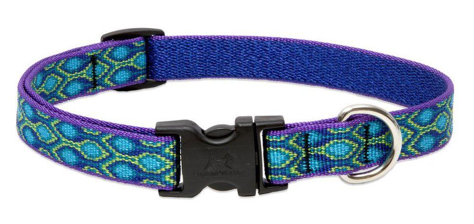 lupine-dog-collar