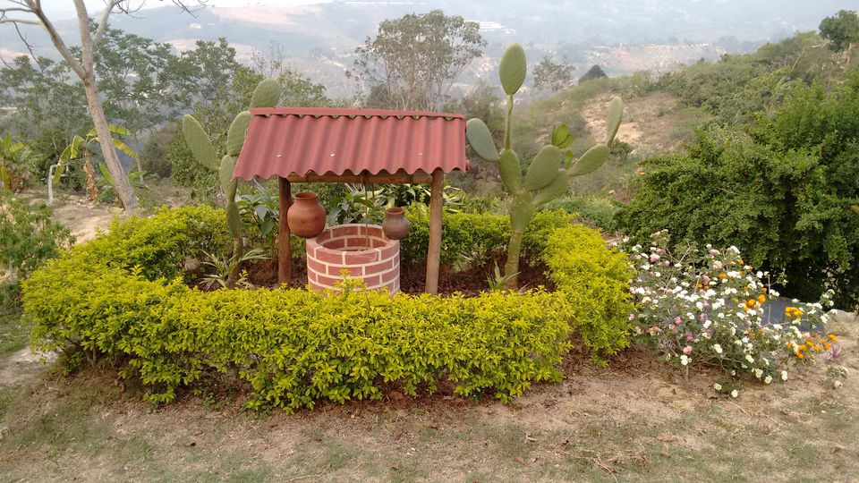 Water well amidst desert plants in park.