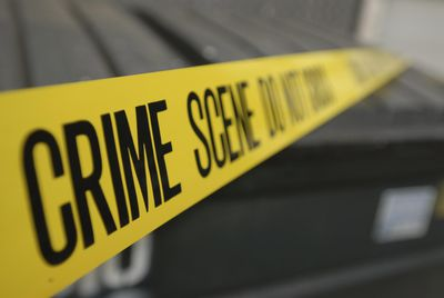 understanding the study of criminology and a look at popular criminologists Criminologists study and analyse the justice system, complex crimes, and the  it  is the responsibility of a criminologist to understand the impact of these crimes.