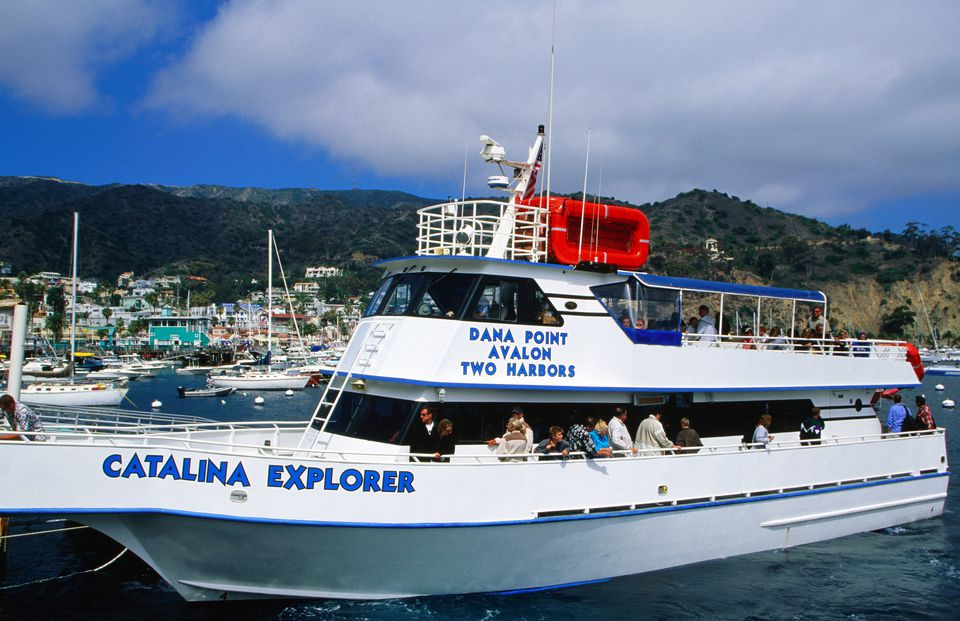 Catalina island ferry what you need to know catalina island ferry sciox Images