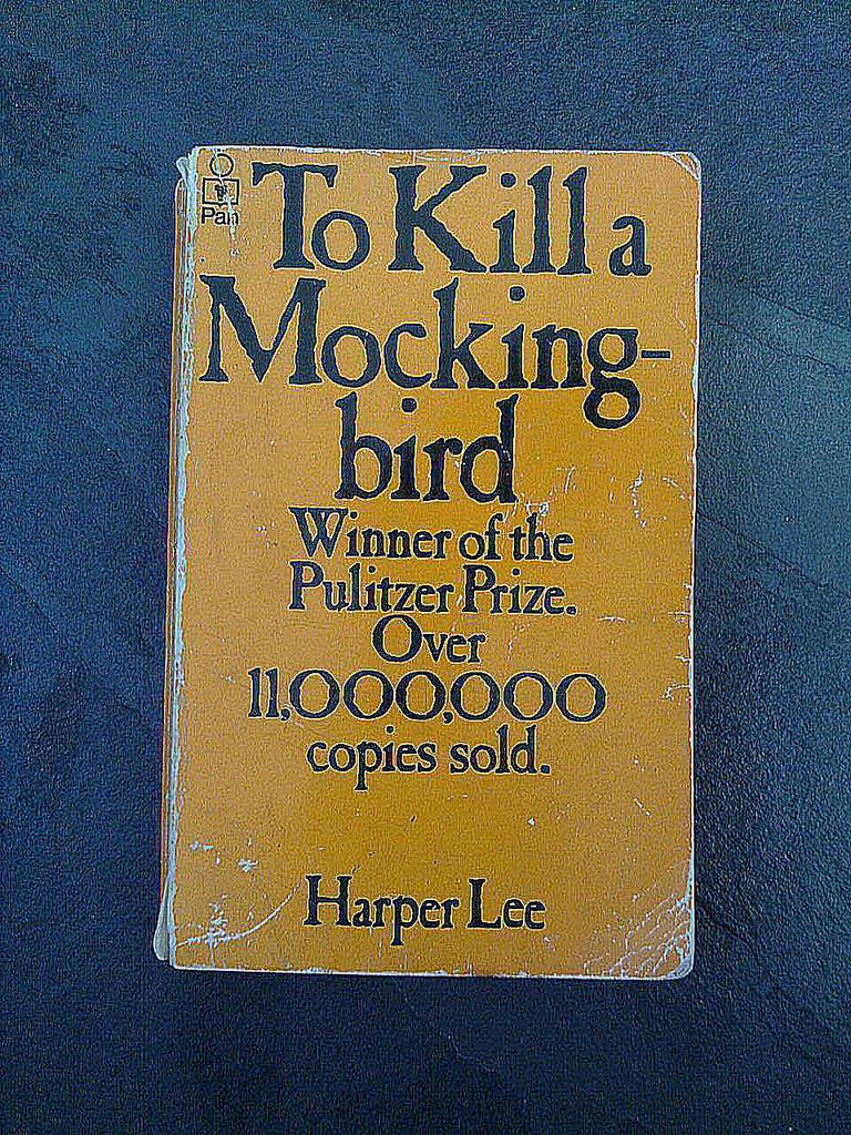 a destructive force in society in to kill a mockingbird by harper lee Racism and prejudice have never been isolated within any particular society or culture in the book to kill a  mockingbird, by harper lee, large portions of the maycomb citizenry were ruled by bias, fear, and a belief in  racial hierarchy-the very same forces that hitler himself exploited when gaining power.
