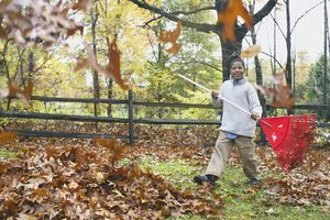 Child Raking Leaves