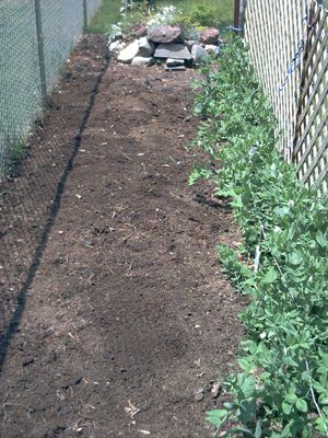 The soil has been evened out.