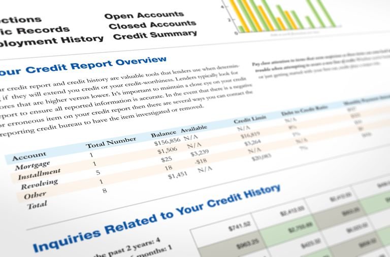 Picture of Information in Credit Report