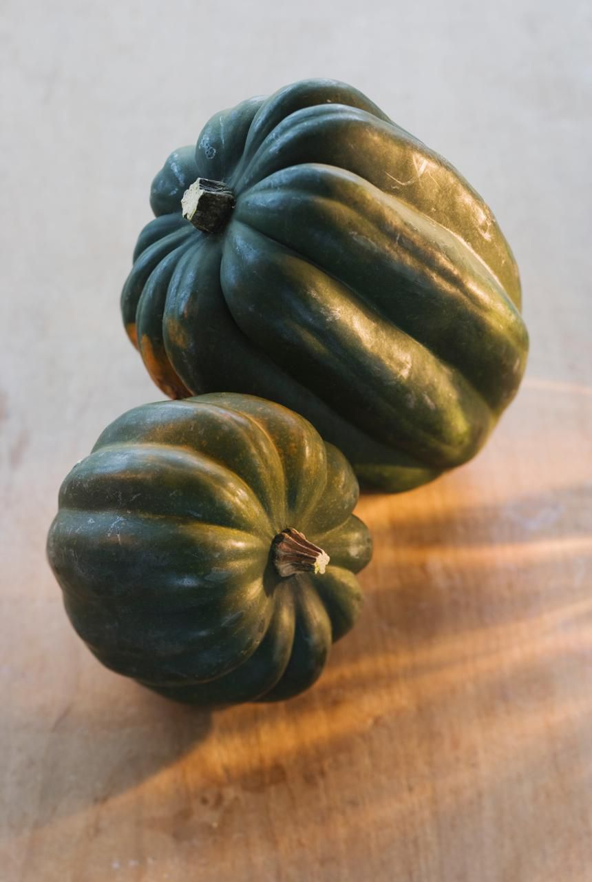 squash basic facts and cooking tips