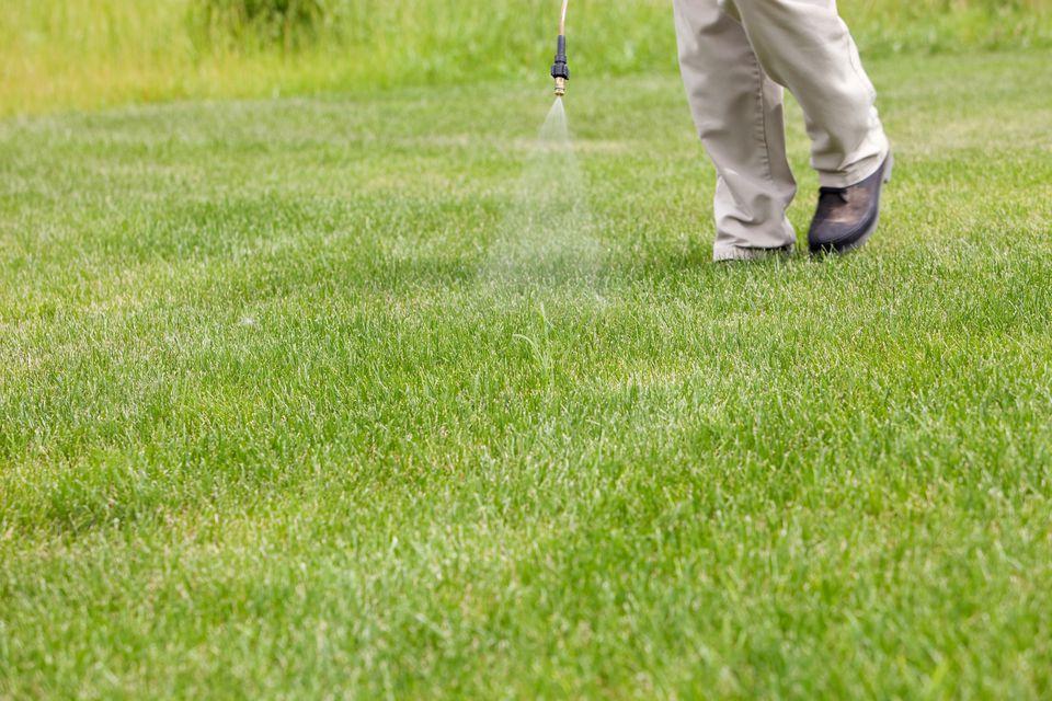 Crabgrass herbicide