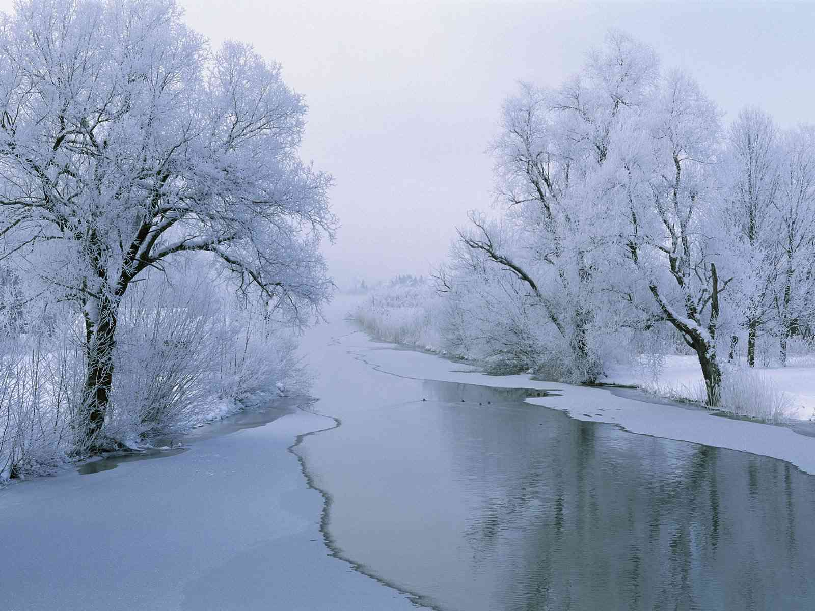 17 beautiful and free winter wallpapers voltagebd