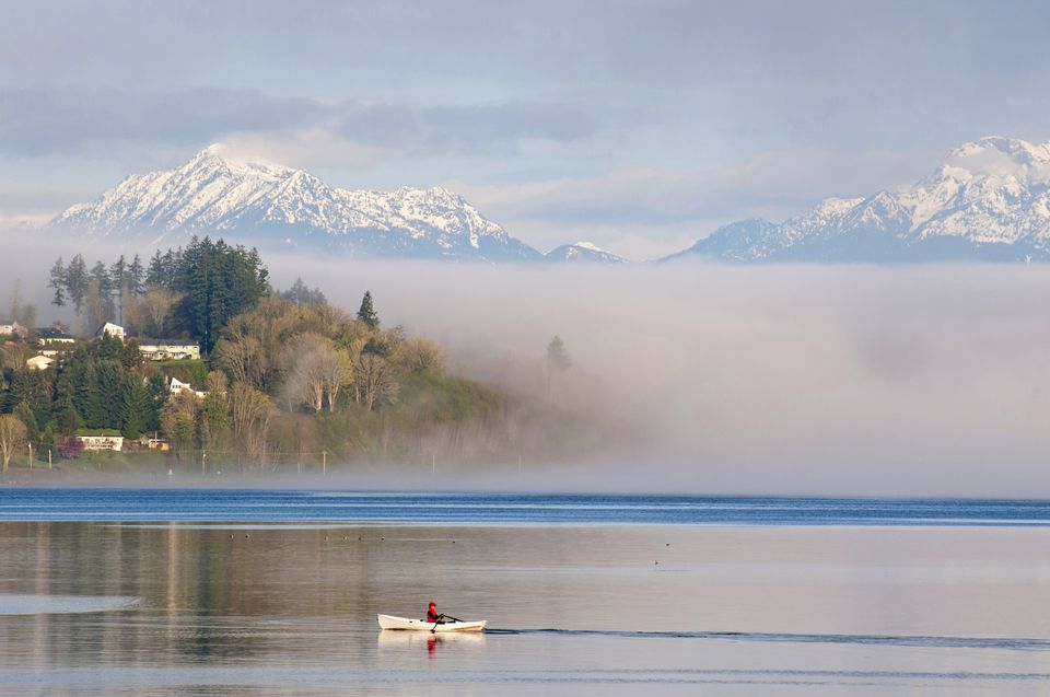 Man rowing at dawn with Olympic Mountains in background, Port Orchard Narrows, Bainbridge Island, Washington, USA