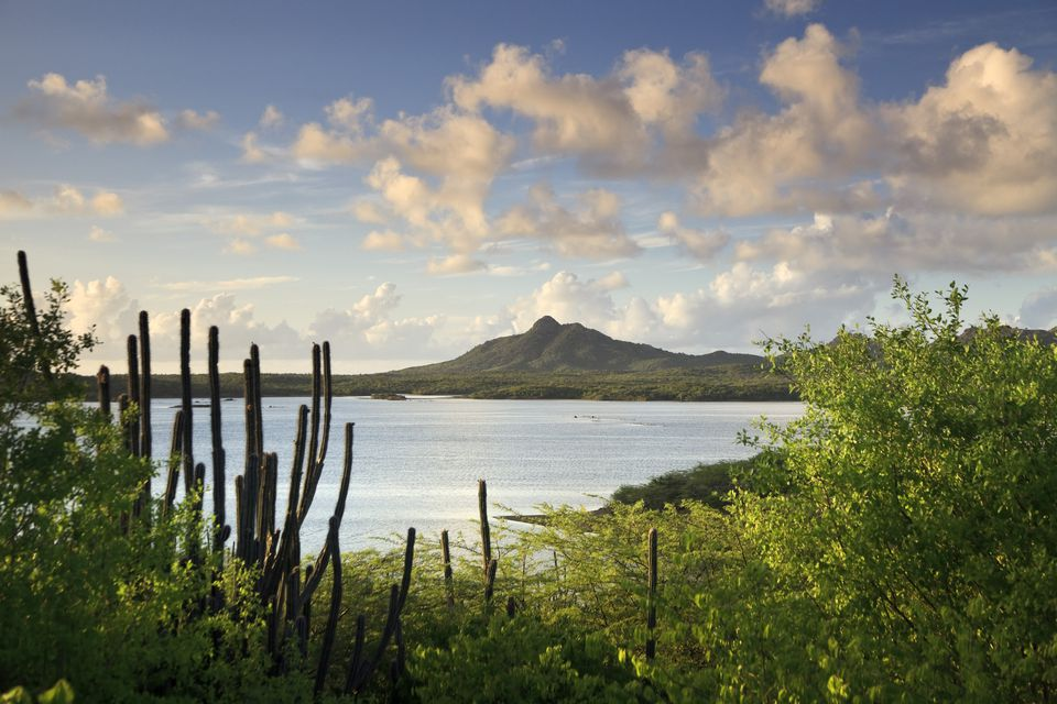 Caribbean, Netherland Antilles, Bonaire, Washington Slagbaai National Park, Gotomeer Lake