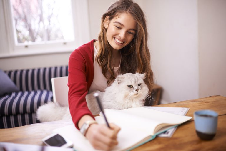Young woman studying with a white long-haired cat in her lap