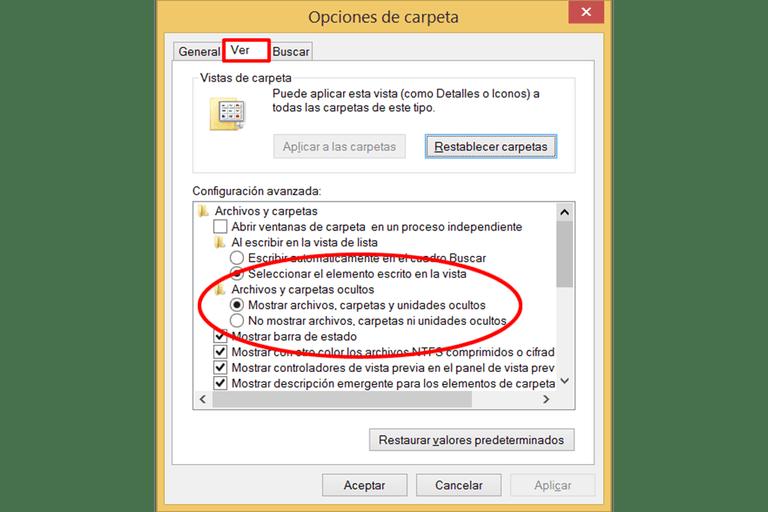 Ver-Archivos-Ocultos-Windows8-81
