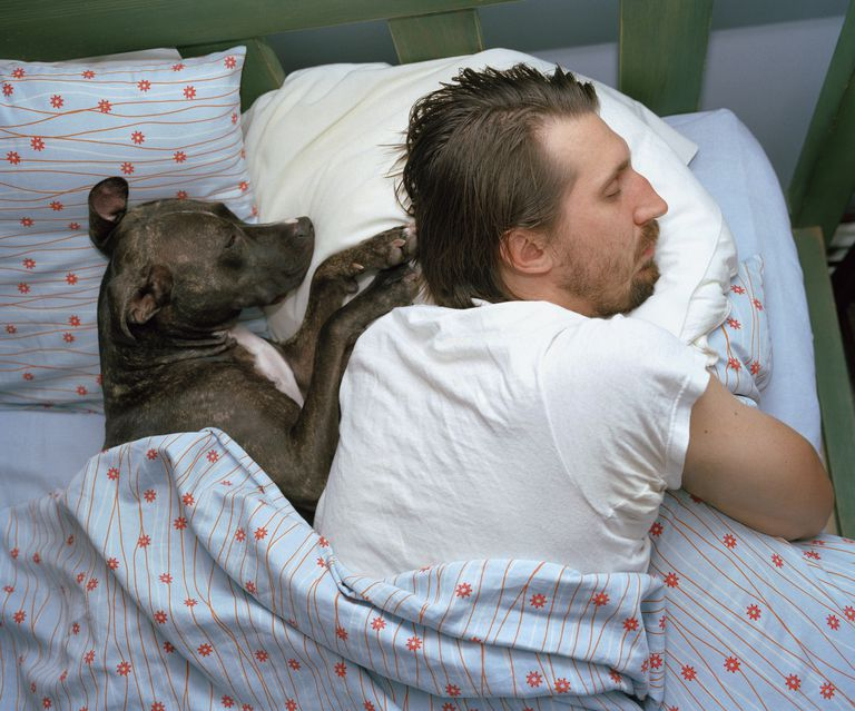 Man and dog sleeping on bed, elevated view
