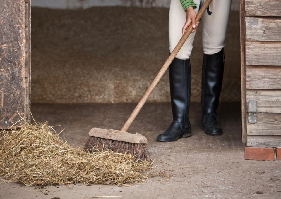 How To Muck Out Or Clean A Horse S Stall