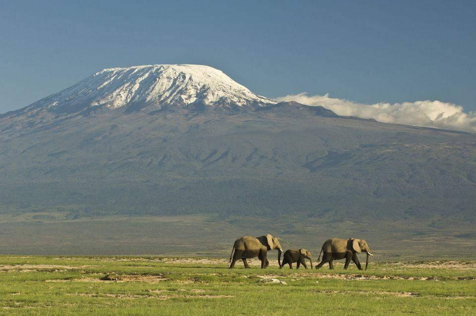 Snow-Capped Mount Kilimanjaro