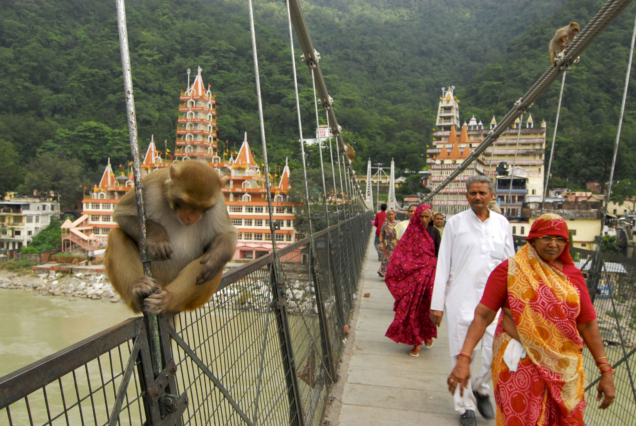 Rishikesh India What To Know Before You Go