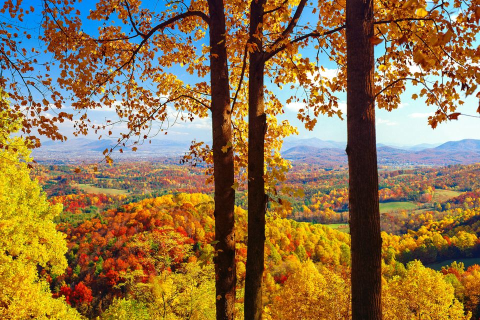Fall Foliage Peak Periods In The Southeast - 8 best places in the us to watch fall foliage