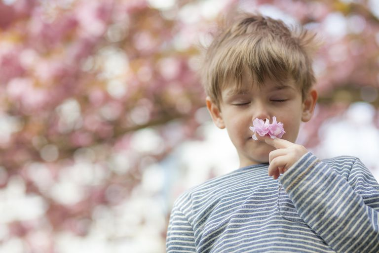 Boy Smells Flower