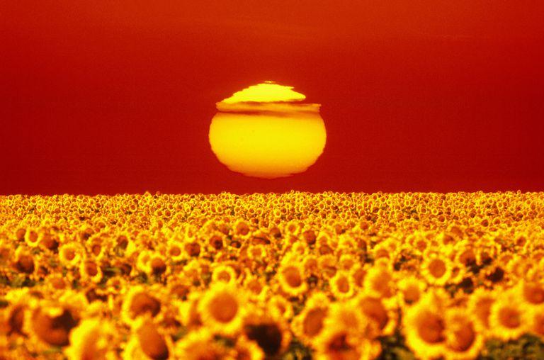 heat wave sun horizon