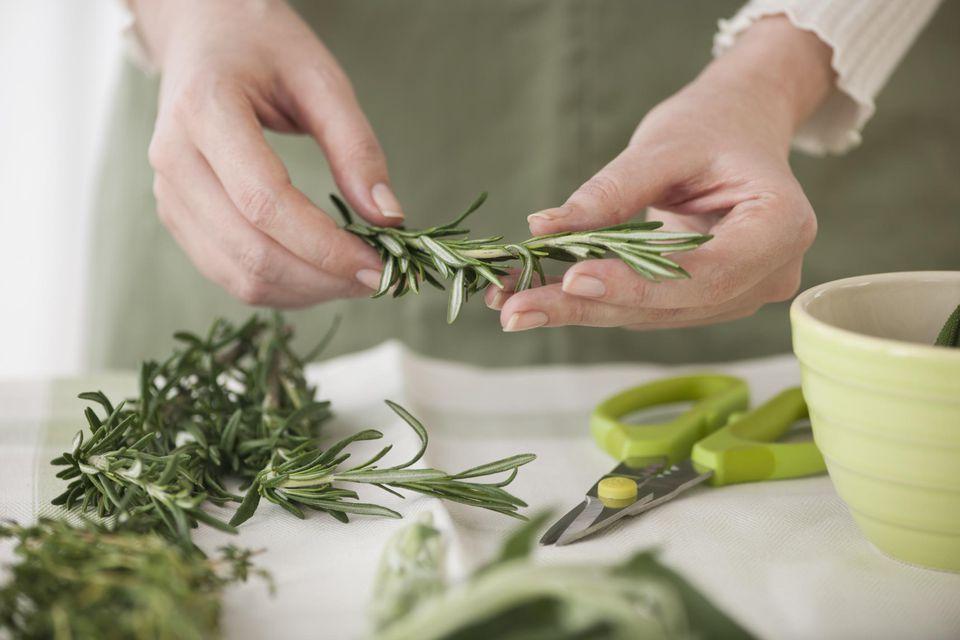 Woman preparing herbs to freeze.