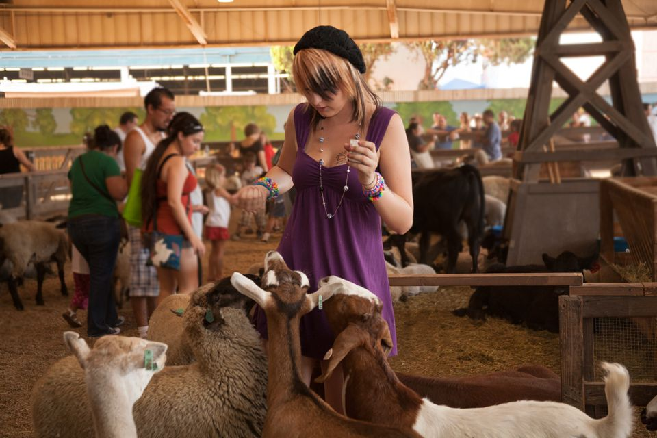 City Meets Country at the LA County Fair