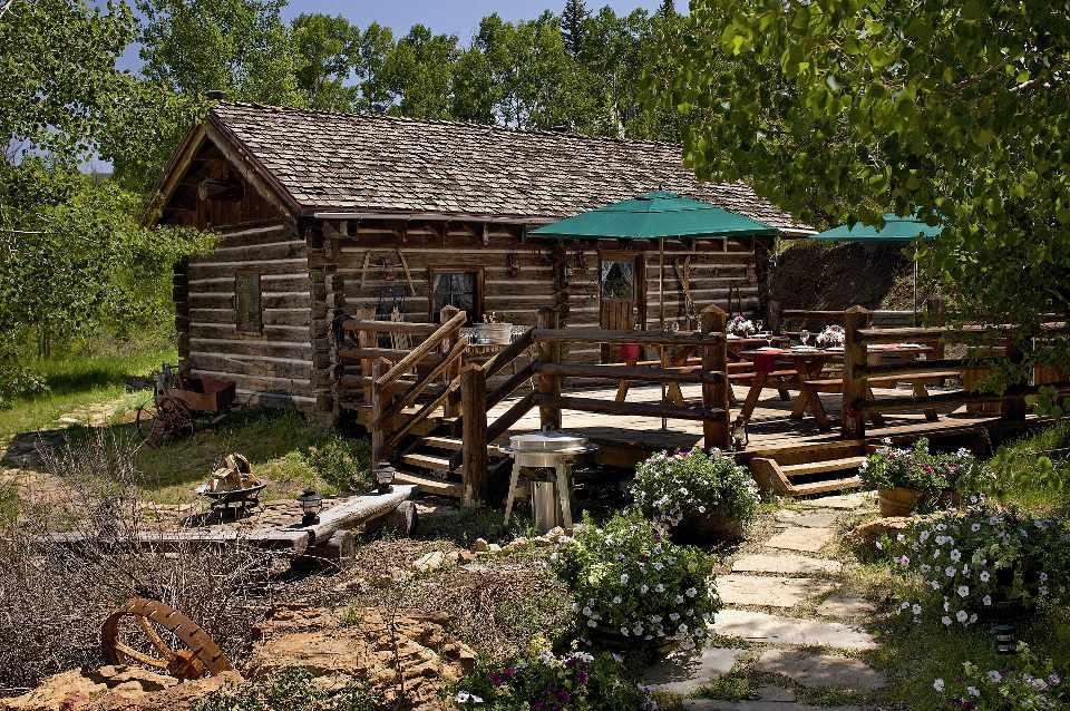 Anderson Cabin in Colorado woods.