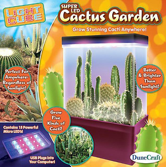Cactus Garden Science Kit