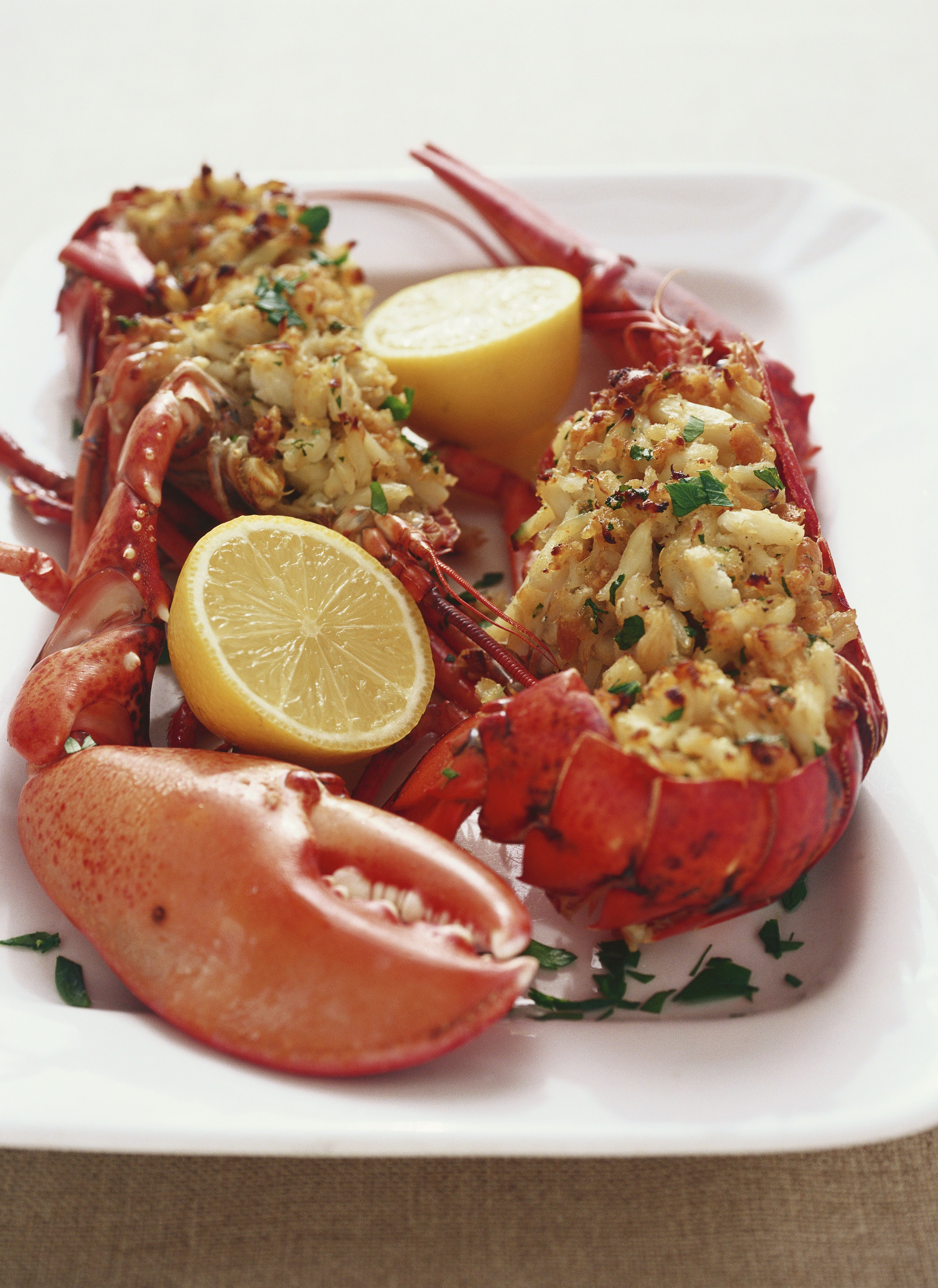 cooking and lobster cuisine essay Our lobster recipes section contains a for calorie conscious people we have a special category of microwave recipes to help prepare low cal and low fat cuisine.