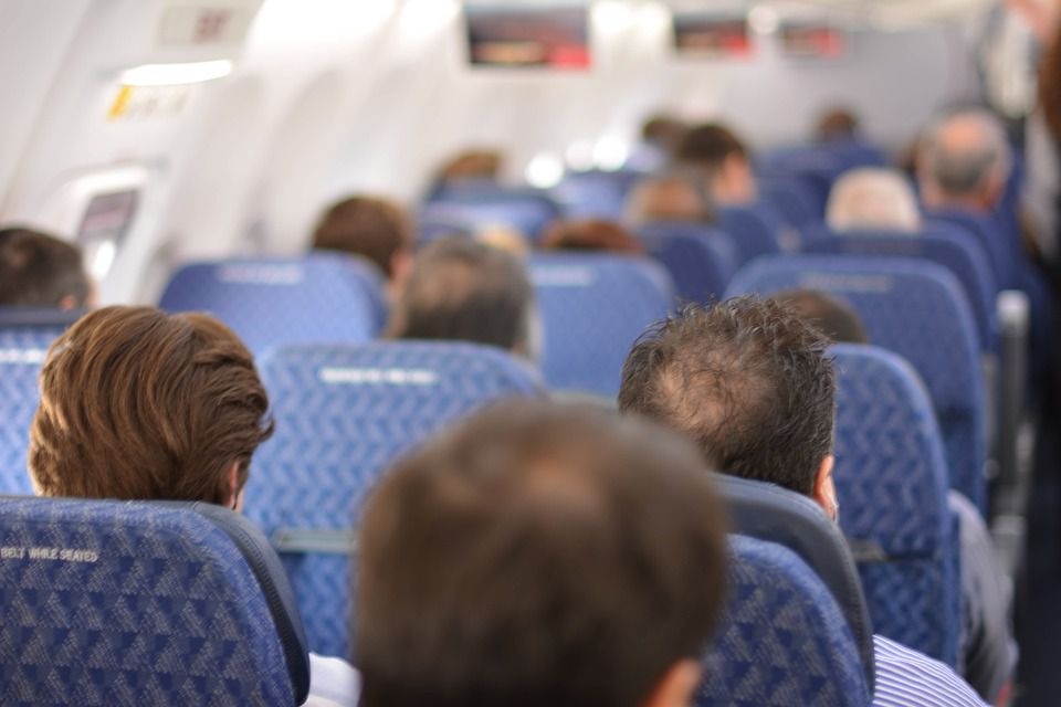 back of men's heads on airplane