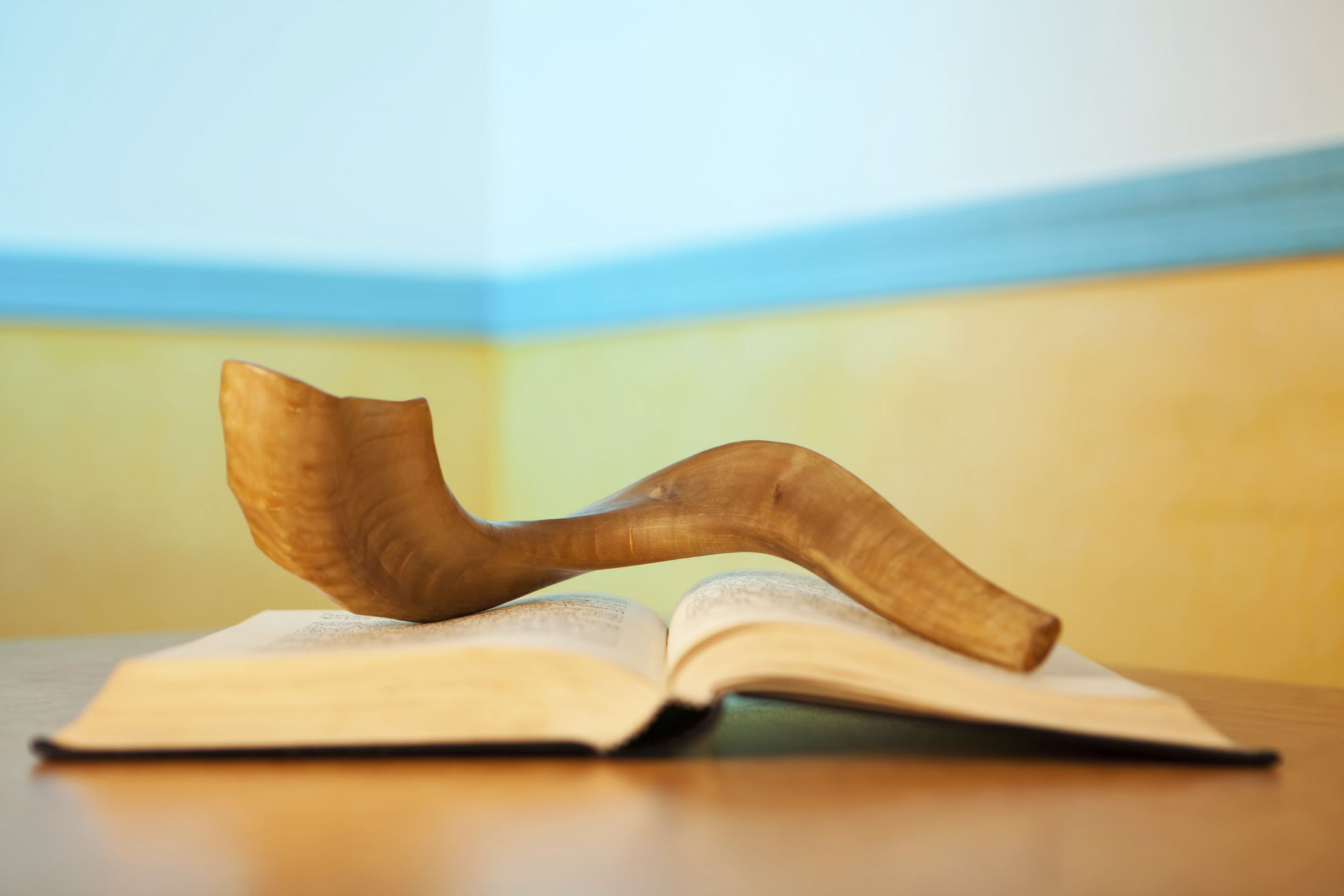 How to observe yom kippur kristyandbryce Images