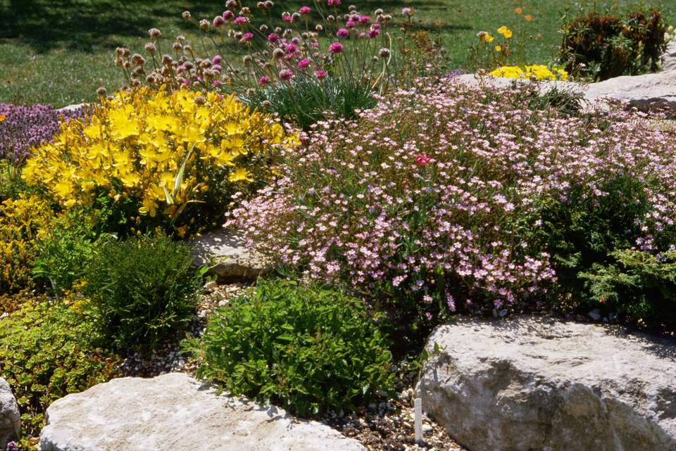 How to landscape with rocks hardscape ideas rock garden with pink and yellow flowers workwithnaturefo
