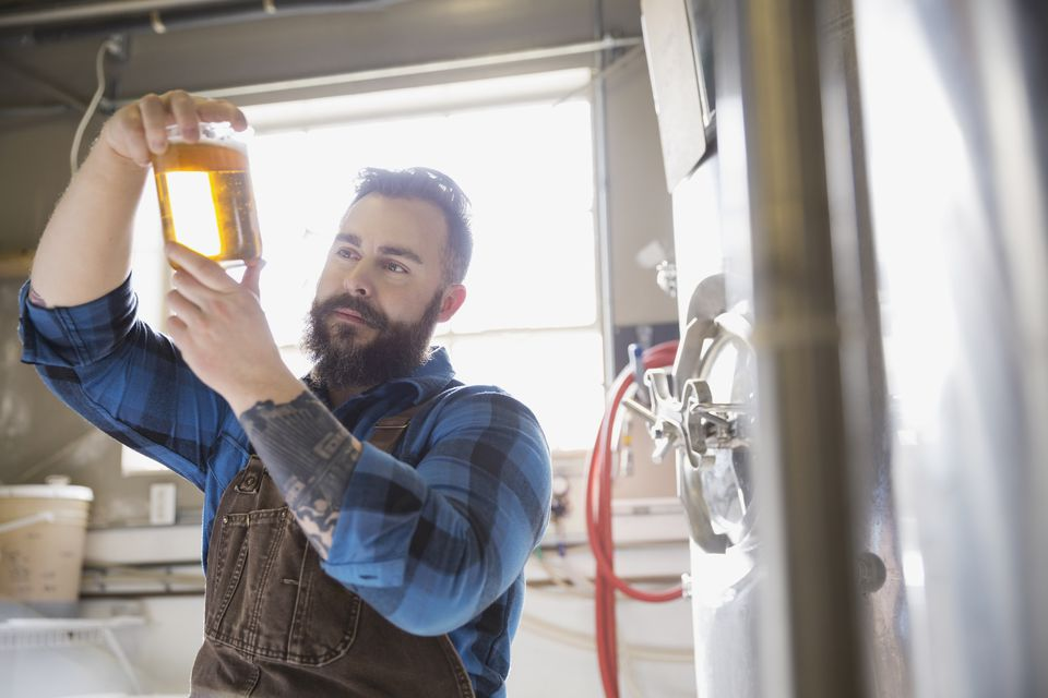Brewery worker examining beer in beaker
