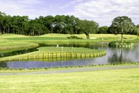 Photograph of the famous 17th Island Green at TPC Sawgrass