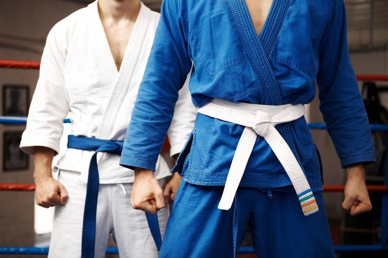 Judo fighters posing