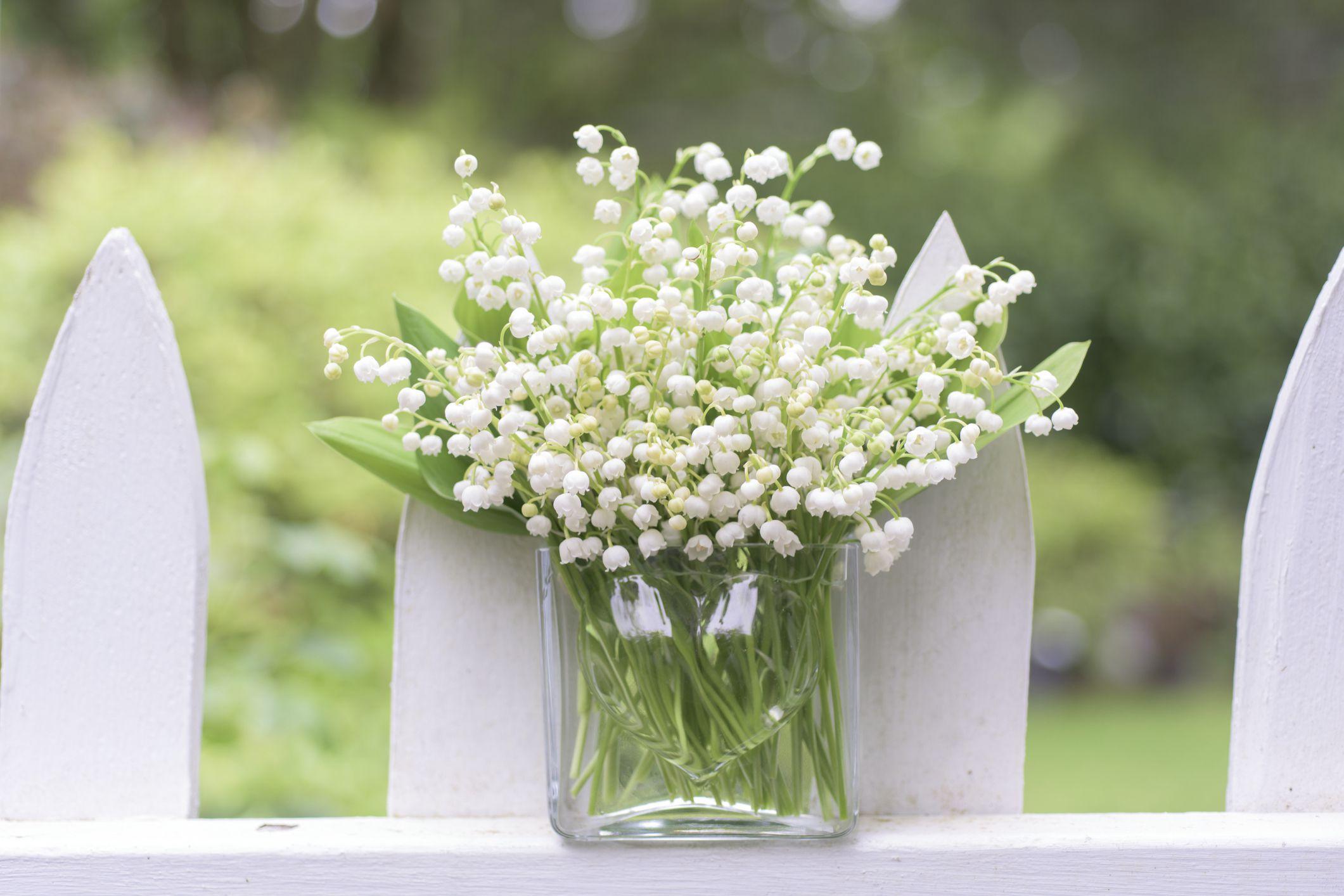 The 12 best spring wedding flowers in season reviewsmspy