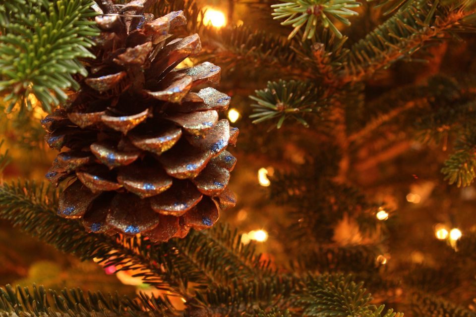 Pine cone ornament in Christmas tree