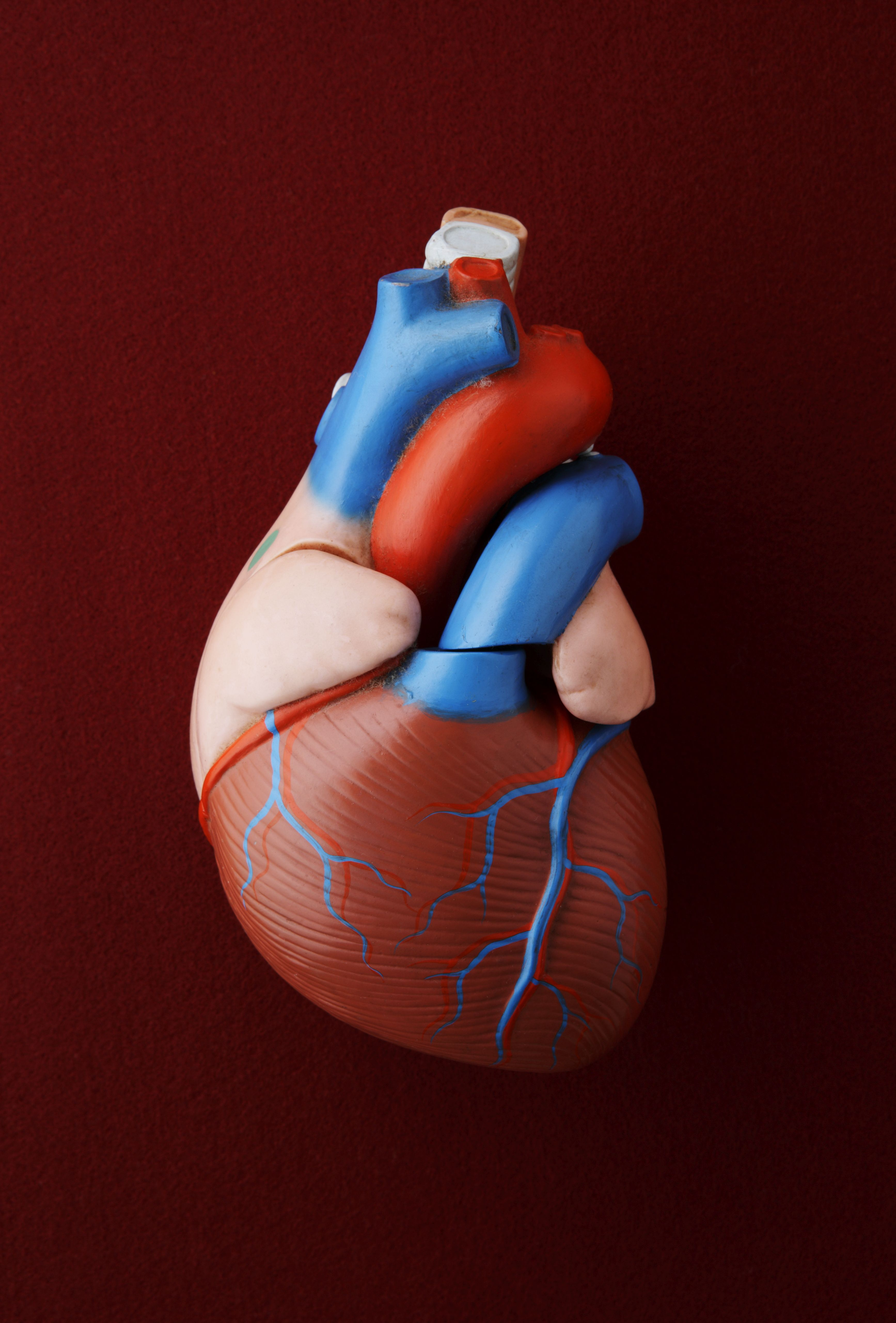 Heart Is An International Peer Reviewed Journal: What Is The Ejection Fraction?