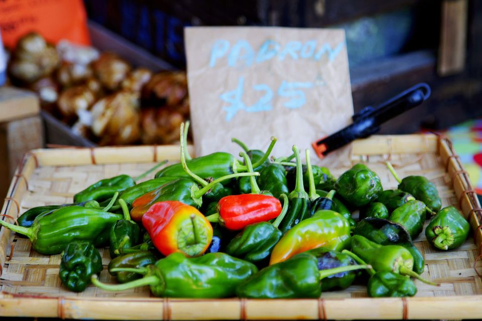 A Slow Food Farmer's Market stall selling padron peppers.